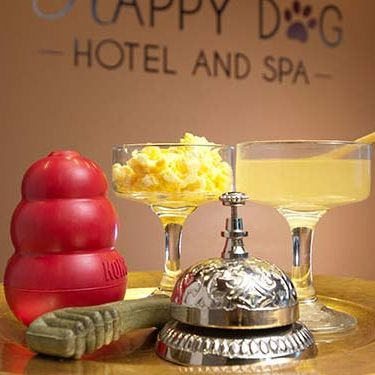 Happy Dog Hotel & Spa